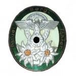 Abzeichen-Polizei-Bergfuehrer-1