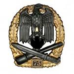 Allgemeines-Sturmabzeichen-Einsatzzahl-75-1