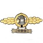 Frontflugspange-Aufklaerer-Einsatzzahl-300-1