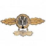 Frontflugspange-Kampf-und-Sturzkampfflieger-Gold-Stern-1